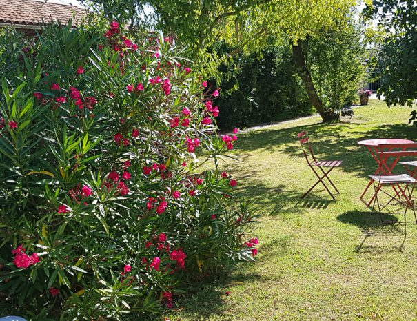 location-soulac-sur-mer-villa-logements-9